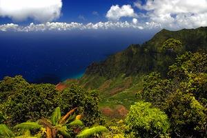 What's Your Kauai Microclimate?