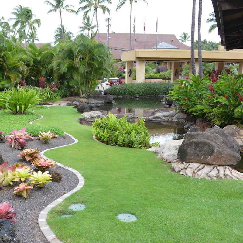 Best Commercial Landscape Design Commercial Landscape: Grass Vs Ground Cover: What's Best For Your Kauai