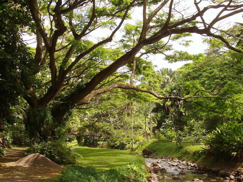 Merveilleux No Ka Oi Landscape Services