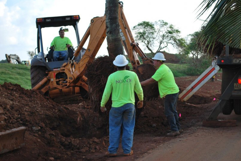 commercial landscaping services in Kauai