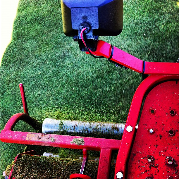 What is Verticutting, And Why Do You Need It?