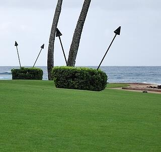 Some landscape contractors on Kauai do not include this cost because they want to outbid competing companies.