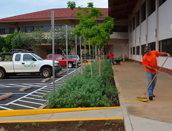 a strong request for proposal process will helps in comparing landscape contractors