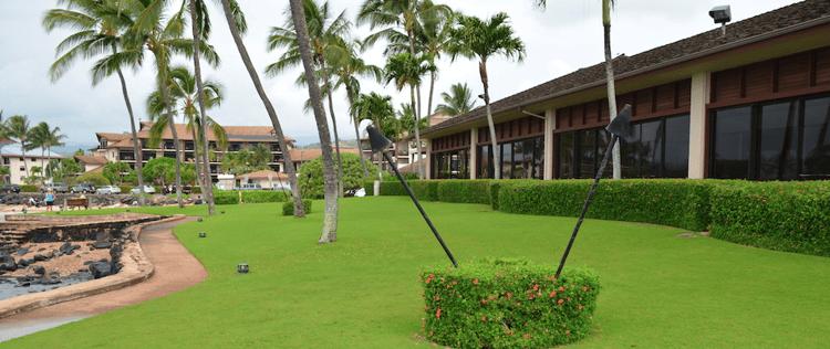 lush, green grass and neat landscape beds requires diligent landscape maintenance on Kauai