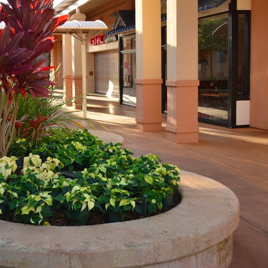 Raised planters throughout Kukui Grove give visitors another opportunity to sit down.
