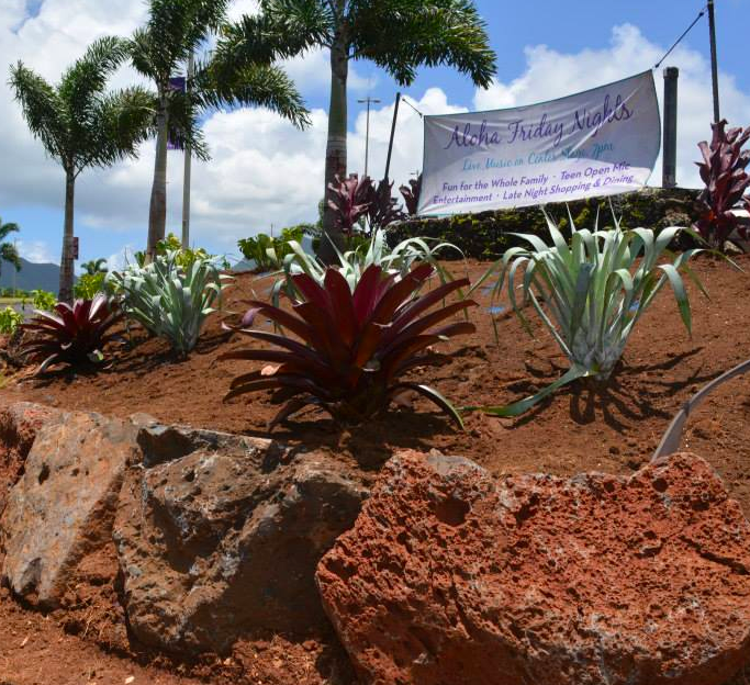No Ka Oi addressed erosion concerns at Kukui Grove with terracing and proper plant selection.