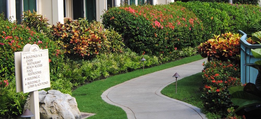 Commercial landscaping isn't a static investment and to keep it looking its best, upgrades and continued maintenance are essential.