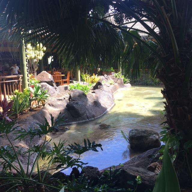 Keoki's Paradise pond and landscaping