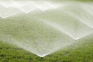 irrigating grass