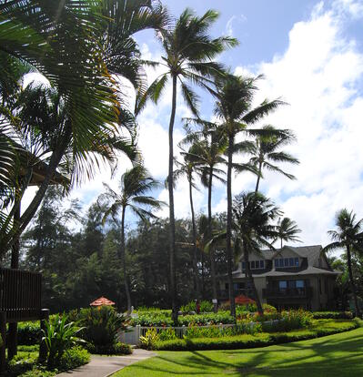 Kaha Lani's biggest landscaping issue comes from the property's windward location.