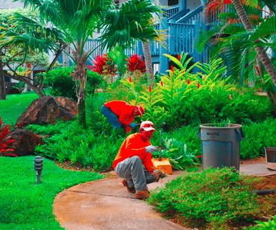 landscape maintenance crew