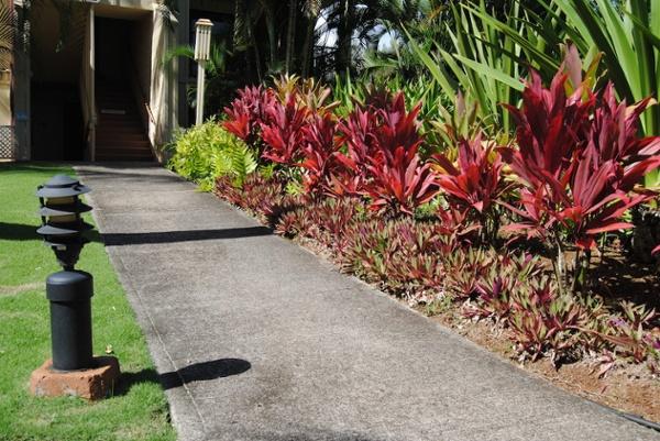 Kauai_Beach_Villas_2.jpg