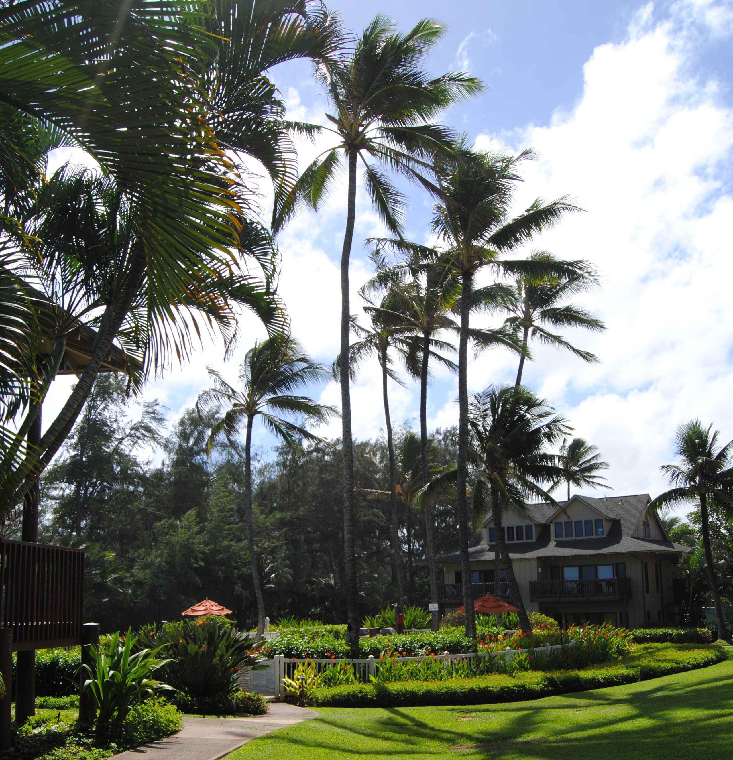 Kaha Lani Resort — Preserving The Beauty Of A Windward Resort